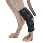 Back on Track® Canine Hock/Ankle Wraps